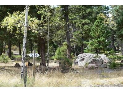 24143 Peak Drive, Conifer, CO 80433 - #: 3081370