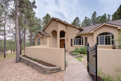 11305 Laforet Point, Colorado Springs, CO 80908 - #: 3124819