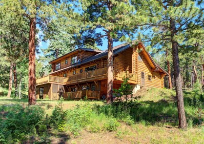 29350 Thunderbolt Circle, Conifer, CO 80433 - #: 3224781
