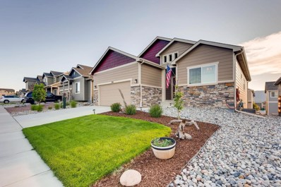 756 Tailings Drive, Monument, CO 80132 - #: 3265738