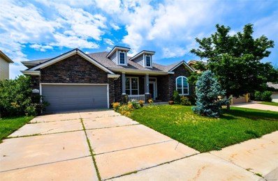1026 Purple Sage Loop, Castle Rock, CO 80104 - MLS#: 3449373