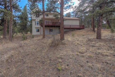 13381 Douglas Ranch Drive, Pine, CO 80470 - #: 3488888