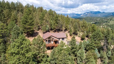 28100 Stonecrop Trail, Conifer, CO 80433 - #: 3503174