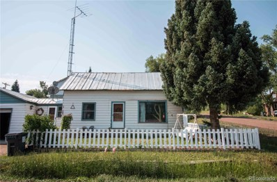 127 W Williams Street, Oak Creek, CO 80467 - #: 3503375