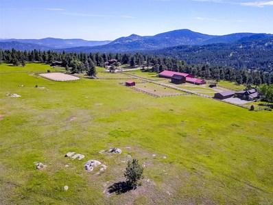 28886 Cragmont Drive, Evergreen, CO 80439 - #: 3590745