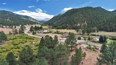16774 Pine Valley Road, Pine, CO 80470 - MLS#: 3693490
