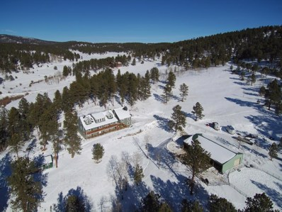 13295 S Baird Road, Conifer, CO 80433 - #: 3696070