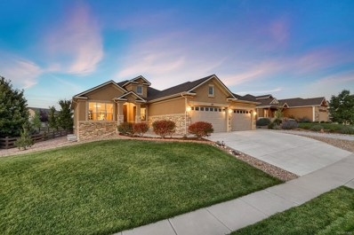 373 Coyote Willow Drive, Colorado Springs, CO 80921 - MLS#: 3748051