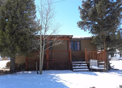 70 Smith Road, Bailey, CO 80421 - #: 3833468