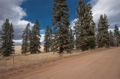 197 Joshua Road, Divide, CO 80814 - MLS#: 3866678
