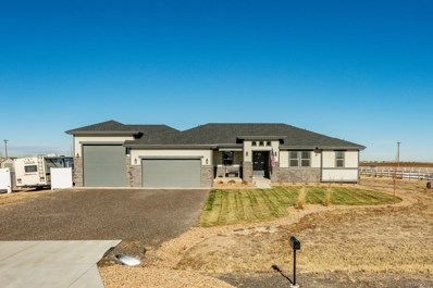 30719 E 151st Avenue, Brighton, CO 80603 - #: 4026856