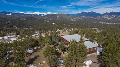 6199 S Skyline Drive, Evergreen, CO 80439 - #: 4056621