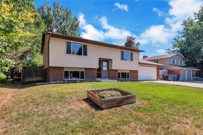 1328 S Lincoln Street, Longmont, CO 80501 - #: 4089617