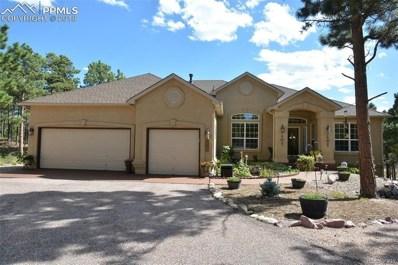 935 Pinenut Court, Colorado Springs, CO 80921 - MLS#: 4152886