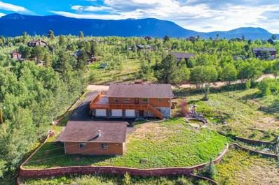 81 Gold Flake Terrace, Bailey, CO 80421 - MLS#: 4161951