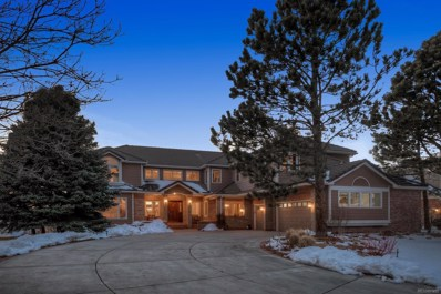 91 Falcon Hills Drive, Highlands Ranch, CO 80126 - #: 4226445