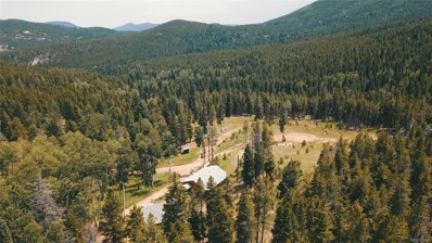 8683 Cub Creek Trail, Conifer, CO 80433 - #: 4230861