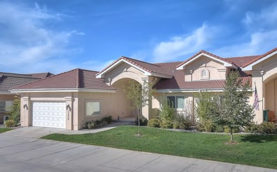 13958 Paradise Villas Grove, Colorado Springs, CO 80921 - MLS#: 4313757
