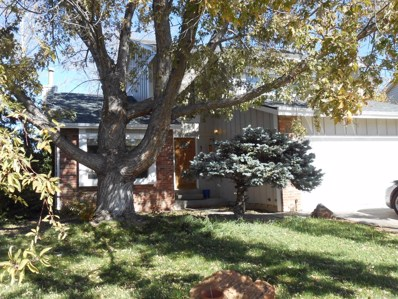 5146 S Yampa Circle, Centennial, CO 80015 - MLS#: 4381287