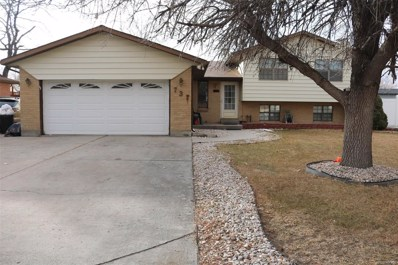 737 S 10th Avenue, Brighton, CO 80601 - #: 4420099