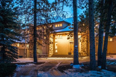 31281 Island Drive, Evergreen, CO 80439 - #: 4466831