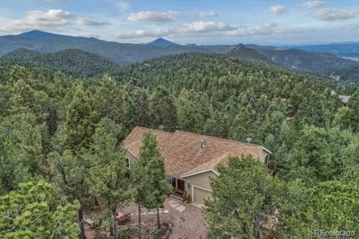 367 Homestead Road, Divide, CO 80814 - #: 4480357