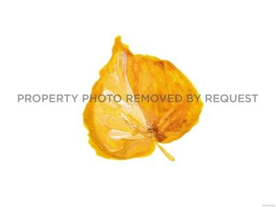 3412 Chestnut Avenue, Loveland, CO 80538 - MLS#: 4541319