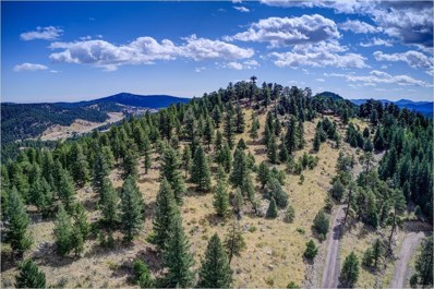 970 Soda Creek Road, Evergreen, CO 80439 - #: 4587562