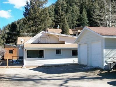 117 Red Fox Lane, Idaho Springs, CO 80452 - MLS#: 4609032