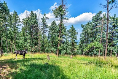30908 Isenberg Lane, Evergreen, CO 80439 - #: 4620956