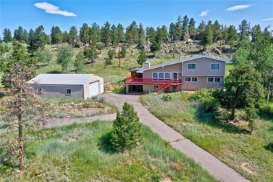 203 Deer Trail Drive, Bailey, CO 80421 - #: 4621450