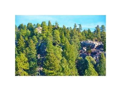 Calfee Gulch, Conifer, CO 80433 - #: 4621699