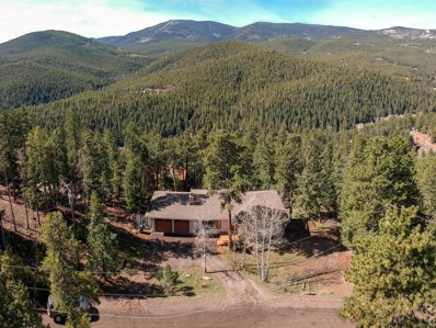 32512 Lodgepole Drive, Evergreen, CO 80439 - #: 4628877