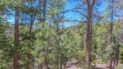 32654-1 Lodgepole, Evergreen, CO 80439 - #: 4673761