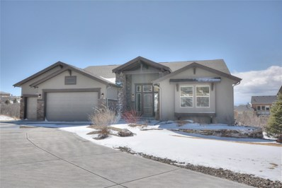 13006 Fisheye Drive, Colorado Springs, CO 80921 - MLS#: 4690690