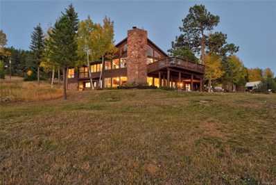 31811 Horseshoe Drive, Evergreen, CO 80439 - #: 4695318