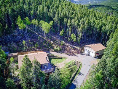 8782 Martin Lane, Conifer, CO 80433 - #: 4705601