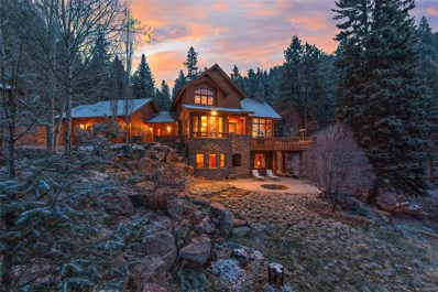 13685 S Baird Road, Conifer, CO 80433 - #: 4843826