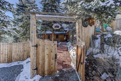 26259 Wild Flower Trail, Evergreen, CO 80439 - #: 4883186