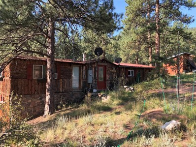 15535 S Elk Creek Road, Pine, CO 80470 - #: 4917895