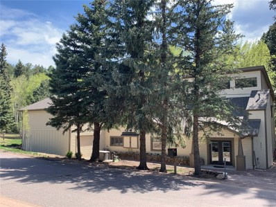 5571 Little Cub Creek Road, Evergreen, CO 80439 - #: 4952900