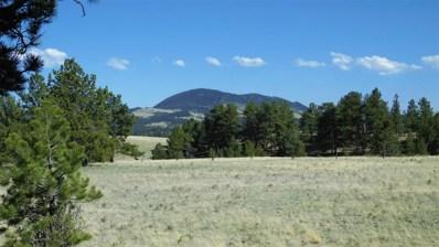 1665 Deer Lane, Guffey, CO 80820 - MLS#: 5014948