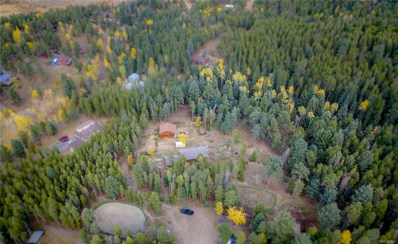 28553 Birch Lane, Conifer, CO 80433 - #: 5015092