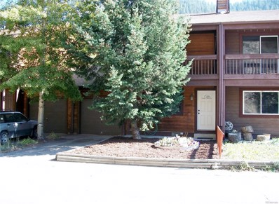 3327 Riverside Drive, Idaho Springs, CO 80452 - MLS#: 5024343