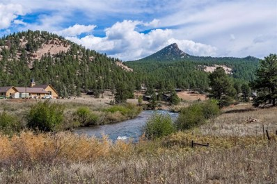 28110 S River Road, Pine, CO 80470 - MLS#: 5192718