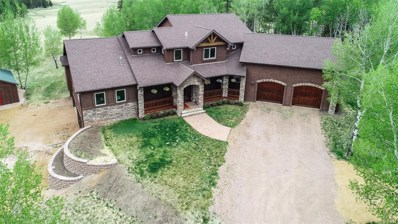 1471 County 51 Road, Divide, CO 80814 - MLS#: 5258845