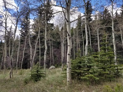 Lot 11 Witter Gulch, Evergreen, CO 80439 - #: 5271570