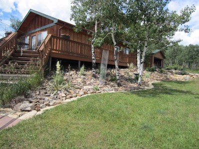 26166 Holbrook Street, Conifer, CO 80433 - #: 5279874