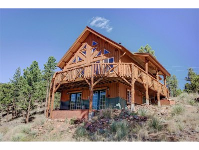 29462 High Road, Pine, CO 80470 - MLS#: 5328181