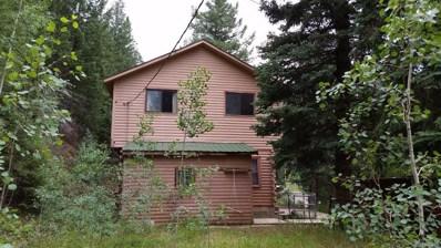 808 Soda Creek Road, Idaho Springs, CO 80452 - MLS#: 5331072